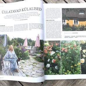 Minu aed / Kevad 2021/3